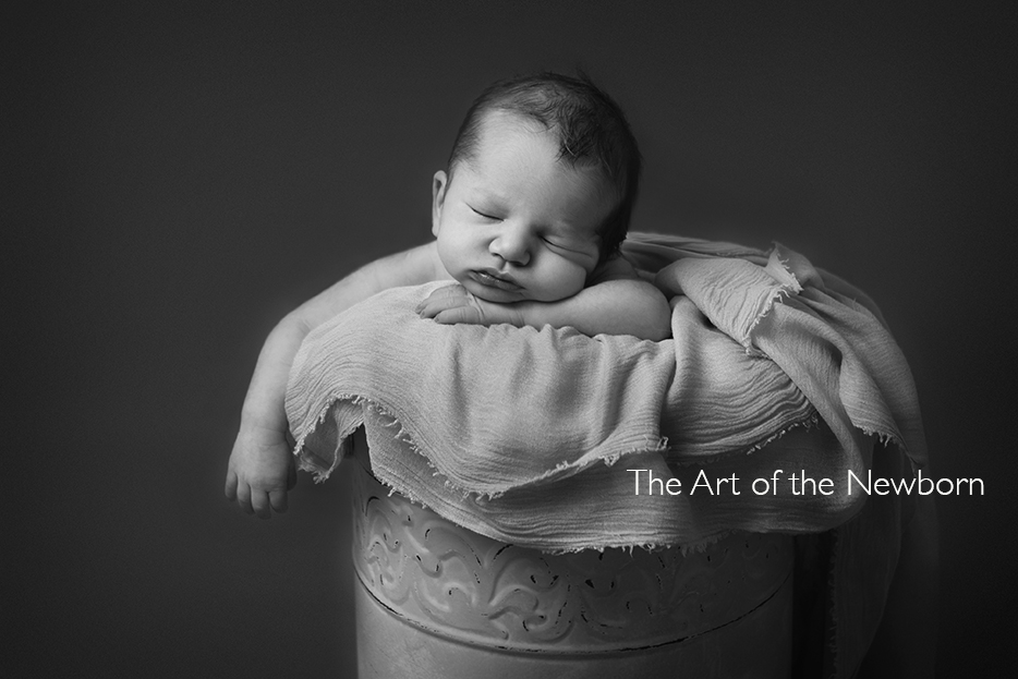 Newborn Photography Training