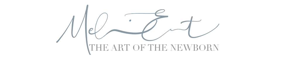 The Art of the Newborn logo